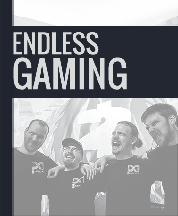 Team Endless Gaming